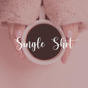WordPress Website Care Plan - Single Shot